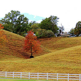 Idyllic Tennessee Countryside by Marian Bell