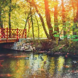 Impressions of Oliwa Park Gdansk Poland  by Carol Japp