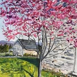 In Bloom by Nancy Rabe