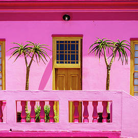 In Pink by Alexey Stiop