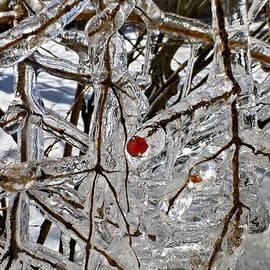 In the Ice Captivity by Lyuba Filatova