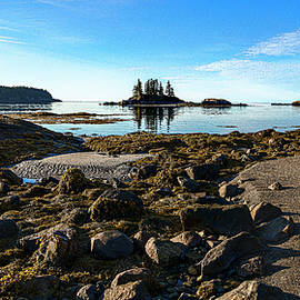 Incoming Tide At Wallace Cove by Marty Saccone