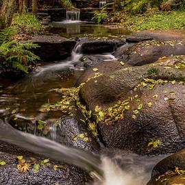 Indian Rock Autumn by Mitch Shindelbower
