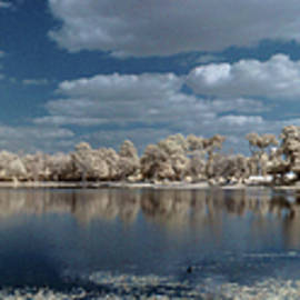 infrared Panorama of Lake De Soto in Lake City by Tim Litwiller
