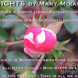 Insights by Mary Mikawoz