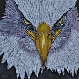 Intense Eagle by Jay Johnston