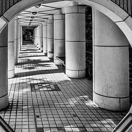 Intriguing Passageway by Elvira Peretsman