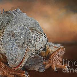 Invasive Iguana by Janette Boyd