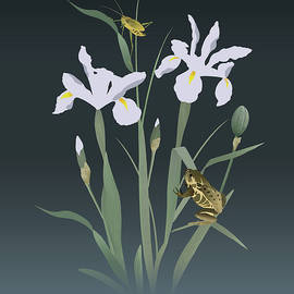 Irises and Stalking Frog by Spadecaller