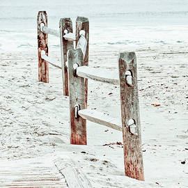 Island Beach State Park in New Jersey sandy beach and fence by Geraldine Scull
