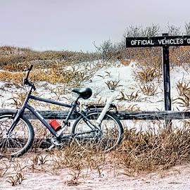 Island Beach State Park retro beach scenic by Geraldine Scull
