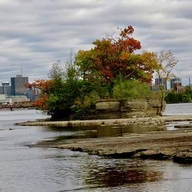 Island in the Ottawa River by Stephanie Moore
