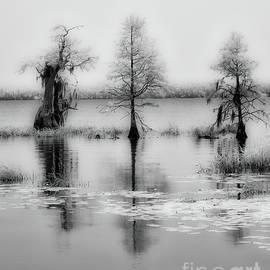 Isle of Still Waters bw by Dan Carmichael