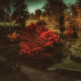 Italian Autumn by Rita Di Lalla
