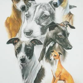 Italian Greyhound Medley by Barbara Keith