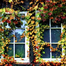 Ivy Framed Window by Susan Maxwell Schmidt