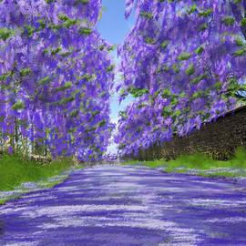 Jacaranda Lane by Gary F Richards