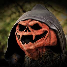 Jack o Lantern Wearing Hoodie by Mike Martin