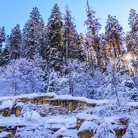 January In Oak Creek Canyon by Lorraine Baum
