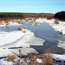 January Roadside Pond by Debbie Oppermann