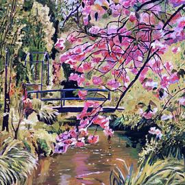 Japanese Footbridge Garden by David Lloyd Glover