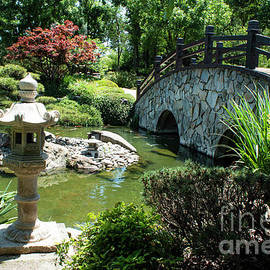 Japanese Garden by Ivete Basso Photography