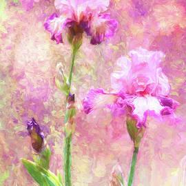Jazzy Iris by Diane Schuster