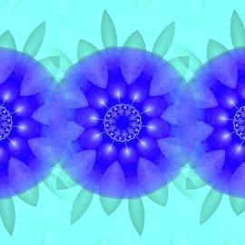 Jellyfish by Raven Deem