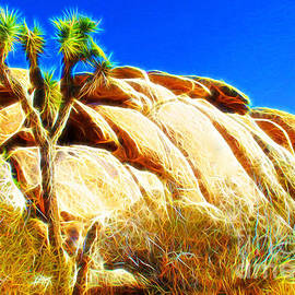 Joshua Tree National Park by Jerome Stumphauzer