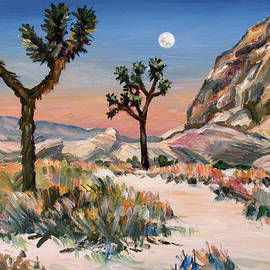 Joshua Tree Memories by Robert Gerdes