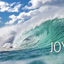Joy by Sean Davey