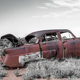 Junk is the Trunk by Enzwell Designs