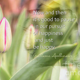 Just Be Happy by Amy Dundon