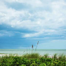 Just Beachy by Mary Ann Artz