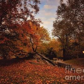 Just Before Sundown - Central Park in Autumn by Miriam Danar