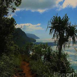 Kalalua Trail by Nehemiah Art