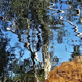 Karijini Gum Tree Reflections by Kathrin Poersch