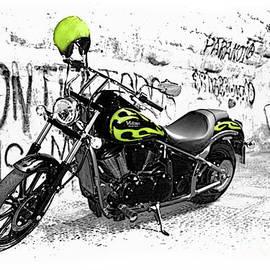 Kawasaki Vulcan 900 Classic Motorcycle II by Al Bourassa
