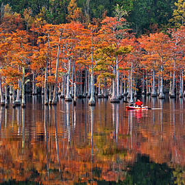 Kayaking Through the Cypress - Autumn by Eric Albright