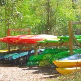 Kayaks and Canoes by David Beard