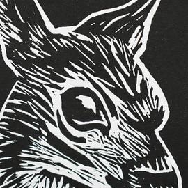 Key Deer by Beatriz Portela