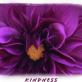 Kindness by Thelma Gill