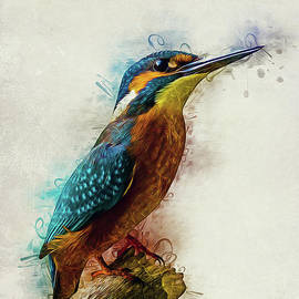 Kingfisher Art by Ian Mitchell