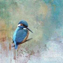 Kingfisher by Eva Lechner