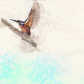Kingfisher Watercolour by Darren Wilkes