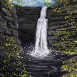 Kingfisher Waterfall by Philip Harvey