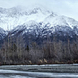 Knik Alaska Winter by David Farlow