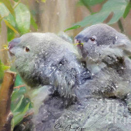 Koala and baby - Endangered by Chris Armytage