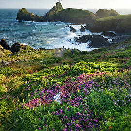 Kynance Cove, The Lizard Peninsula, Cornwall by Justin Foulkes