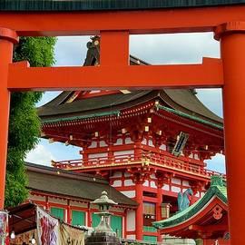 Fushimi-inari Taisha shrine, Kyoto,Japan by Joseph Schofield